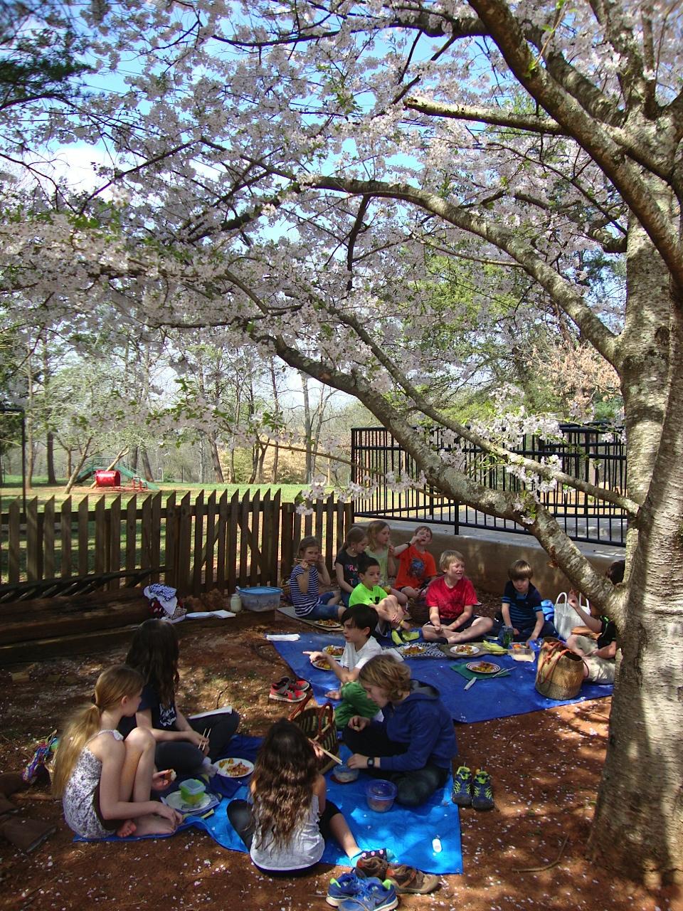 Elementary Montessori Picnic