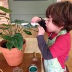 Primary Montessori Class